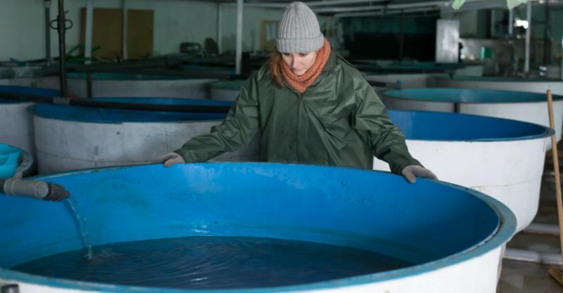Hälterungsbecken sind für die Fischzucht wichtg