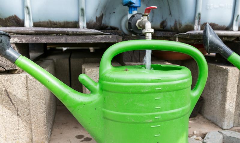 Regenwassernutzung ist praktisch für die Gartenbewässerung