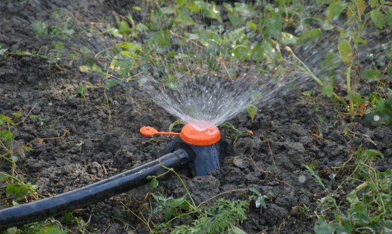 Effektive Regenwassernutzung