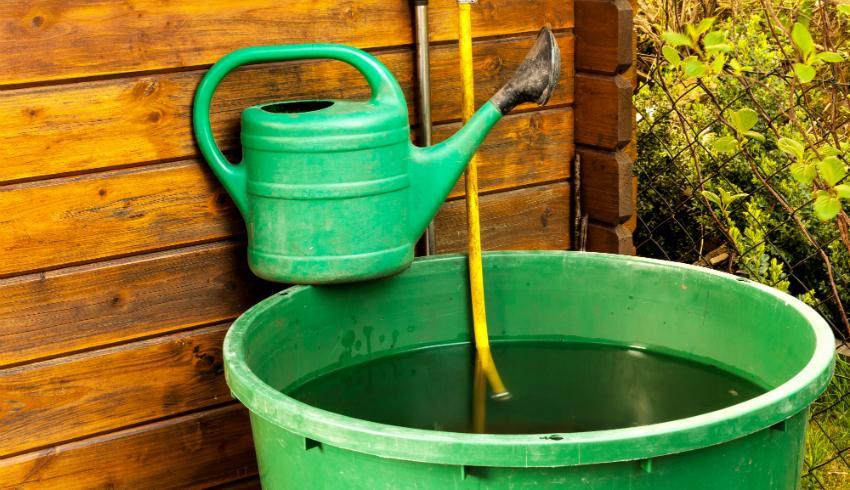 Mit Regenwassernutzung die Gartenbewässerung optimal gestalten