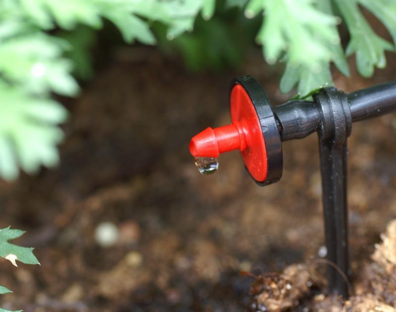 Bewässerung mithilfe eines Tröpfchenstrahls