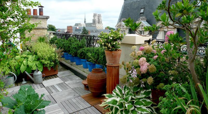 Der Dachgarten als grüne Oase