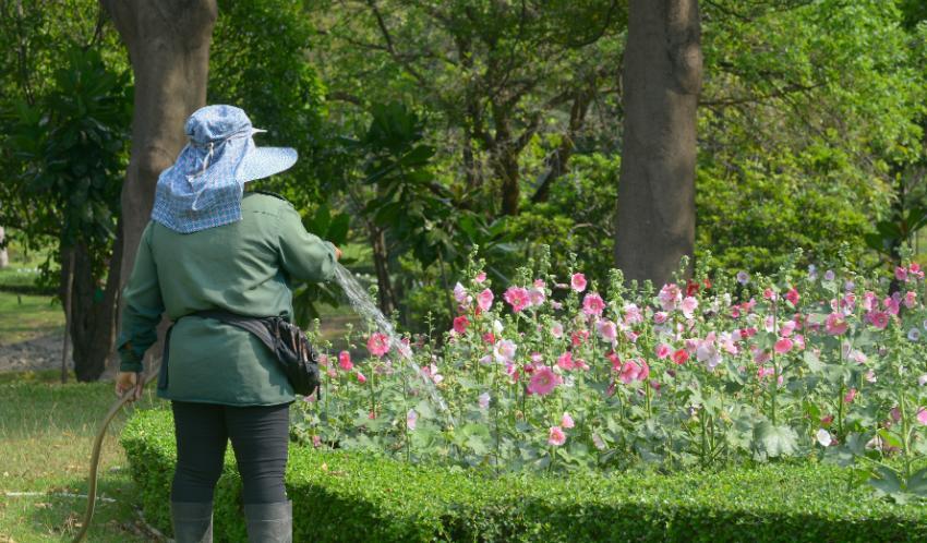 Garten bewässern mit Hilfe von Regenwasser