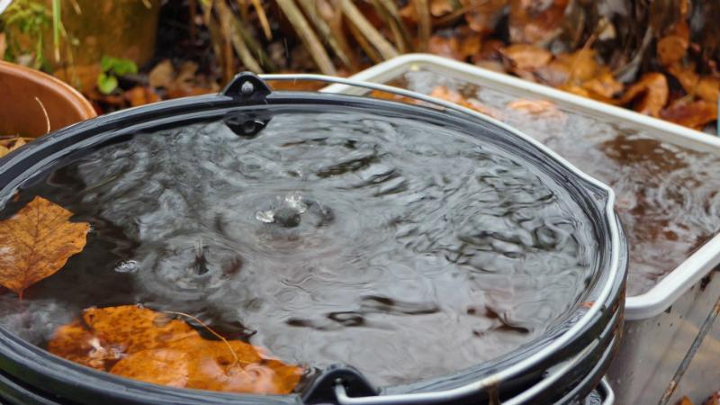 Den Garten umweltfreundlich bewässern
