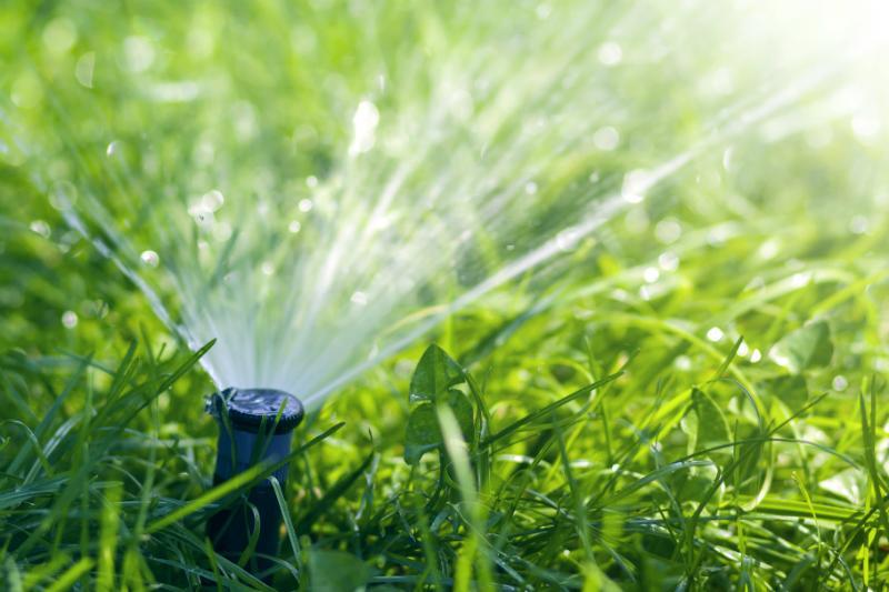 Sauberes Wasser für die Gartenbewässerung