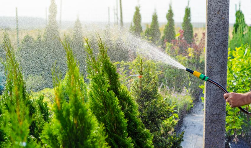 Gartenbewässerung mit einem formstabilen Schlauch