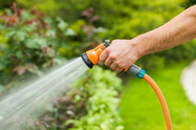 Bewässerung mit Regenwasser