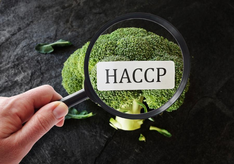 haccp-lebensmittelindustrie-hazard-analysis-critical-control-points