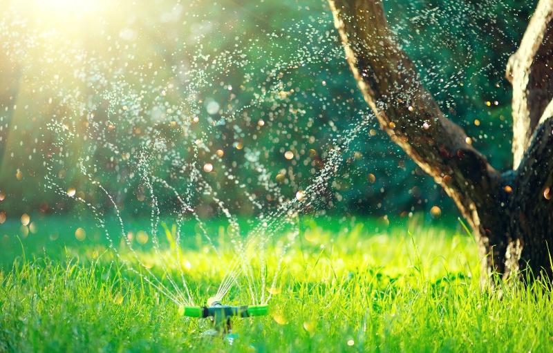 smart-garden-mit-vollautomatisches-sprinkler-bewaesserungssystem
