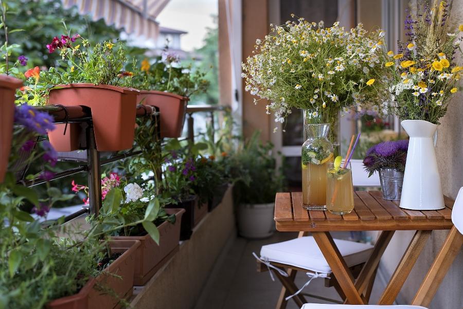 balkonpflanzen-bewaesserungssysteme-topfpflanzen