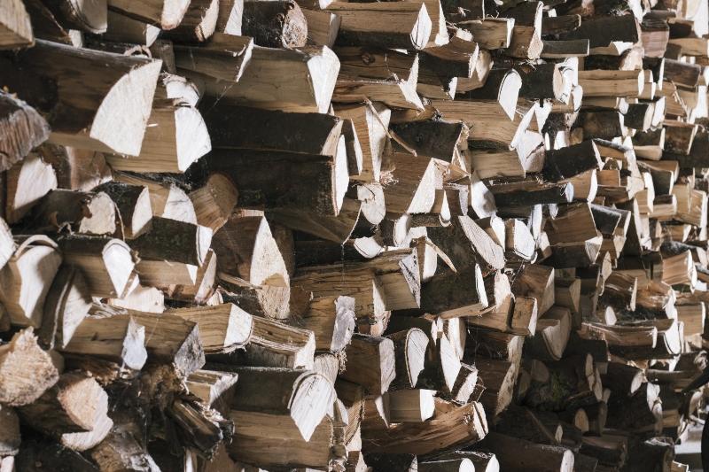 brennholz-lagern-und-trocknen