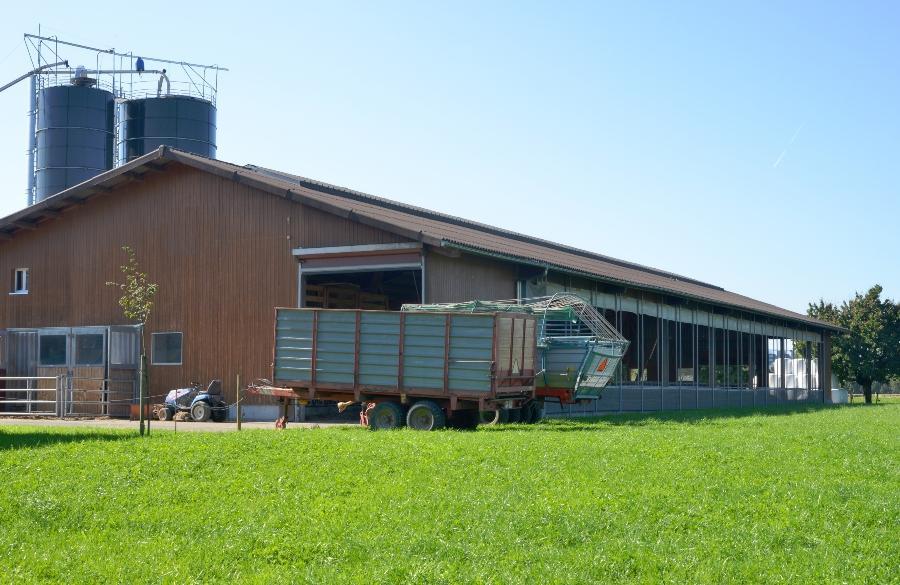 Bauernhof mit Silo und Stall ibc-auf-dem-bauernhof