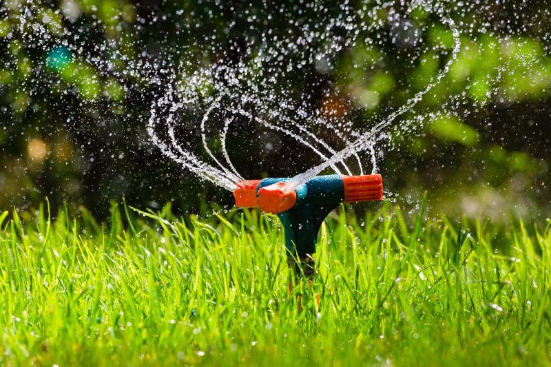 Sprinkleranlage, betrieben durch eine Wasserpumpe für die Gartenbewässerung