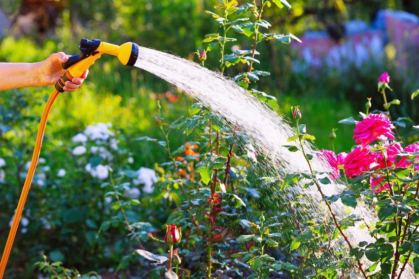 Gartenschlauch-Bewässerung - besonders praktisch mit einer Zisternenpumpe