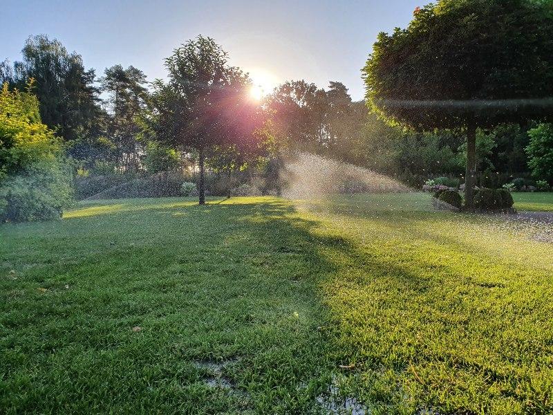 Garten mit Bewässerungsanlage
