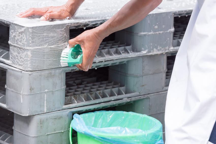 Mann reinigt Kunststoffpalette