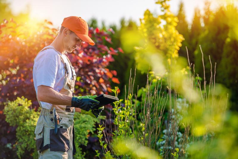 Mann mit Laptop im Garten - Bewässerungscomputer im Einsatz
