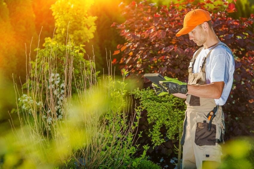 Gärtner steht mit Computer im Garten - Bewässerungssteuerung mit Regensensor von Rain Bird