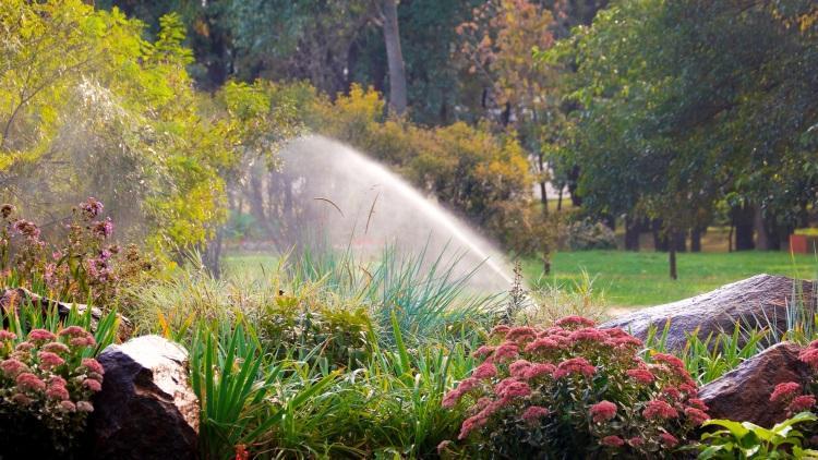Automatisches Beregnungssystem bewässert den Garten - Die richtige Urlaubsbewässerung