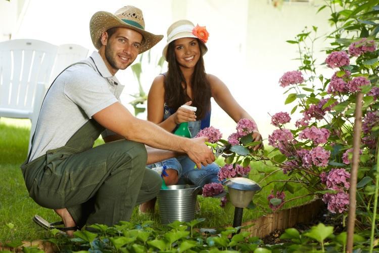 Ein Paar kniet vor einer Blumenhecke und widmet sich der Gartenarbeit - Die richtige Urlaubsbewässerung