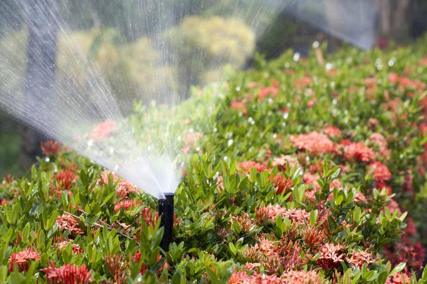Getrieberegner zur Bewässerung von Blumenbeet