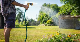 Gartenbewässerung mittels Der IBC Container mit Schlauchanschluss