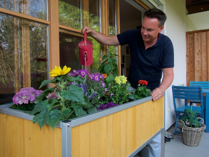 Mann gießt Blumen am Hochbeet