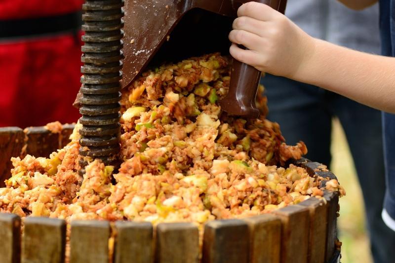 Herstellung von Apfelmost