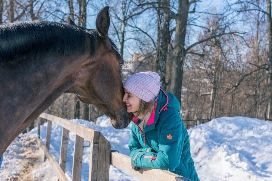 auch-im-winter-ausreichend-wasser-pferd