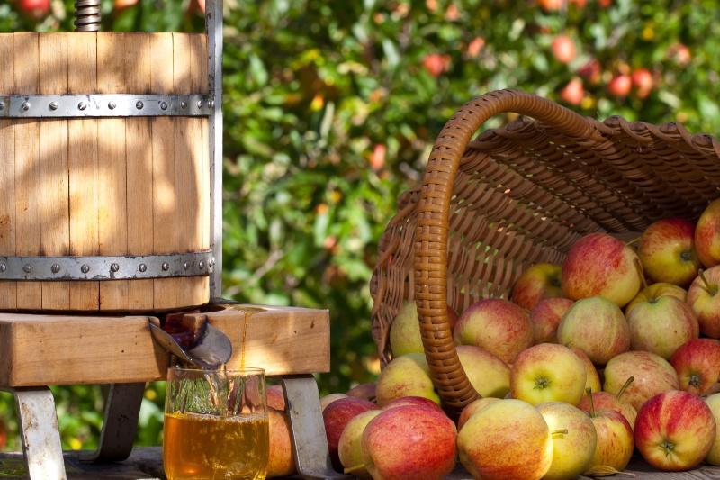 Gärfass und Äpfel