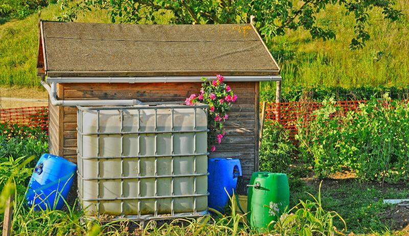 Ein IBC-Container steht in einem Garten vor einem kleinen Schuppen Distanzstück