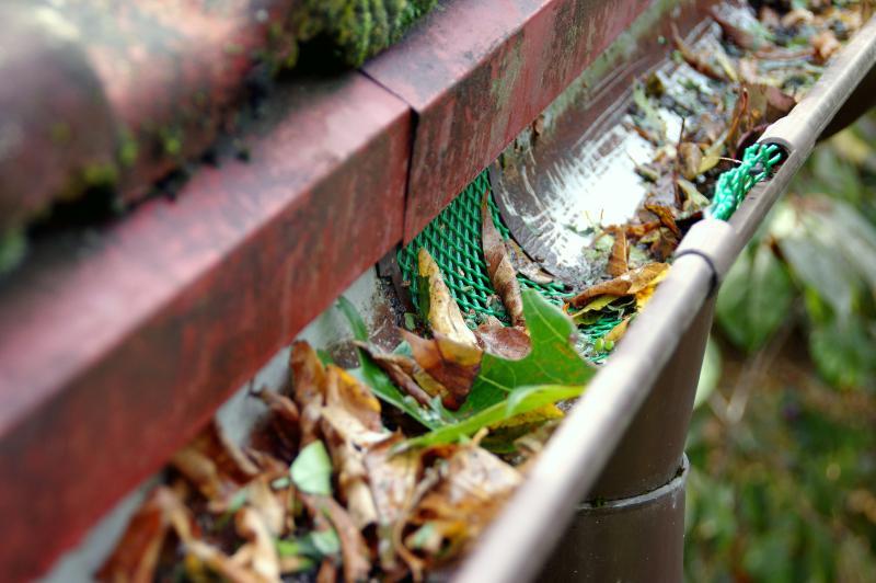 Laub, Äste und anderer Schmutz in einer Dachrinne, von der ein Fallrohr abzweigt