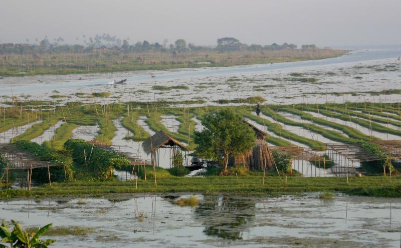 Blick auf die traditionelle Hydrokulturen des Inle-Sees in Myanmar
