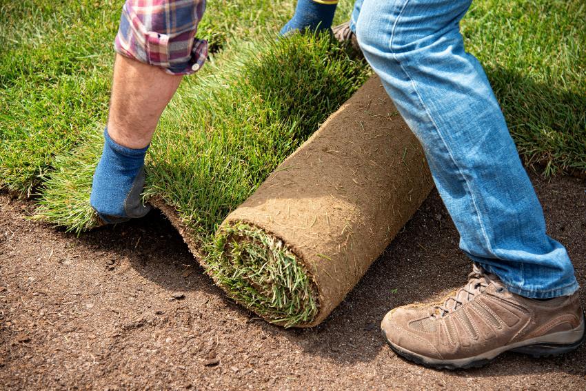 Mann rollte neuen Rasen aus - Unterflurbewässerung sollte im Vorfeld installiert werden