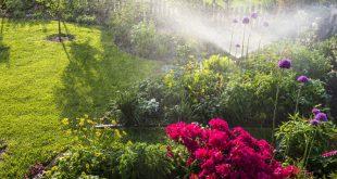 Gartenbewässerung - Automatische Bewässerung