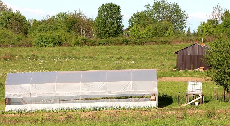 Ein IBC-Hochtank neben einem Gewächshaus, das in einsamer Lage