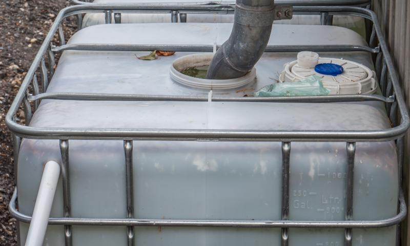 Ein Fallrohr ist direkt in die Einlassöffnung eines IBC-Containers gesteckt. So wir d Regenwasser für die Gartenbewässerung gesammelt