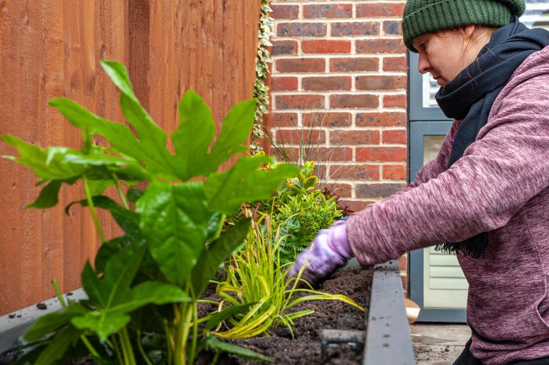 Eine Frau bepflanzt ein Hochbeet mit Zierpflanzen Hochbeet als Sichtschutz