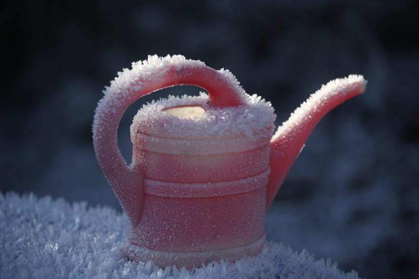 Vereiste Gießkanne - So machen Sie Ihr Bewässerungssystem winterfest