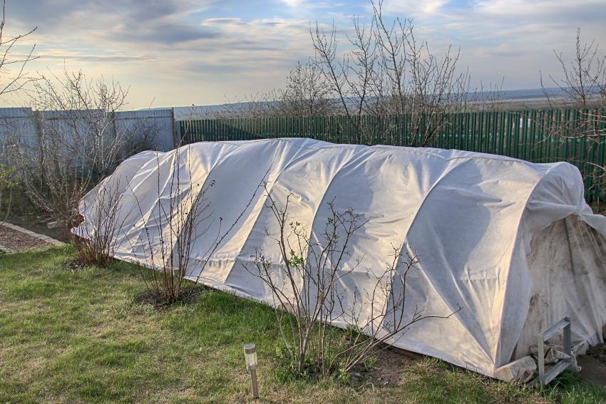 Schutzzelt für Wintergemüse