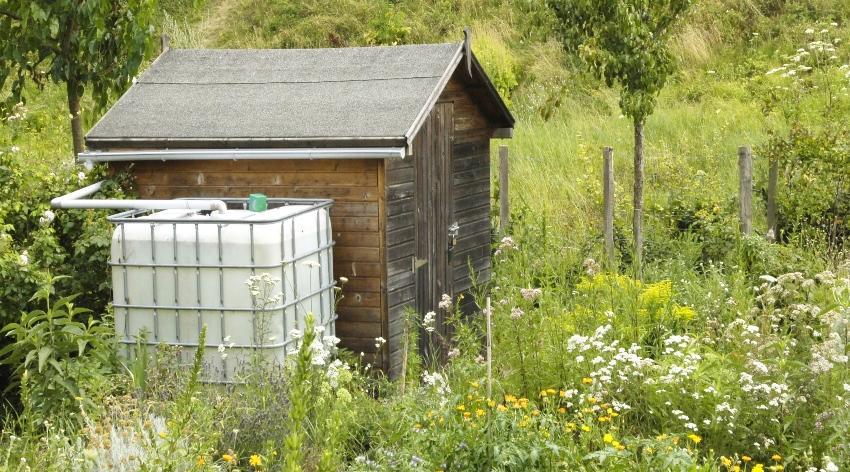 Gefüllter IBC steht als Regecontainer neben einer kleinen Hütte