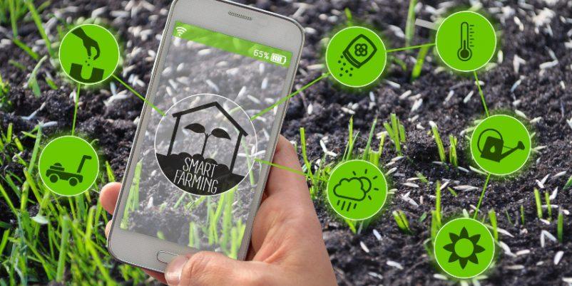 Bewässerung im Smart Garden - Smartphone im Garten