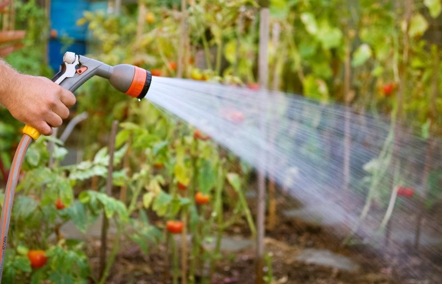 Gartenbewässerung per Schlauch per Wasserzapfstelle oder Wassersteckdose