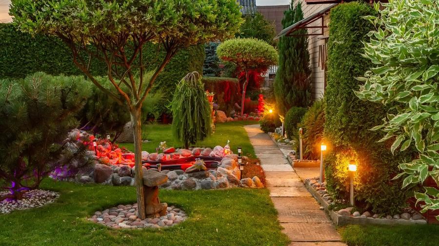 Solitärpflanzen (Baum) im Garten