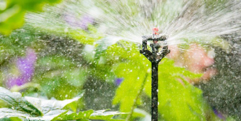 Sprühregner für die Mikrobewässerung nutzen