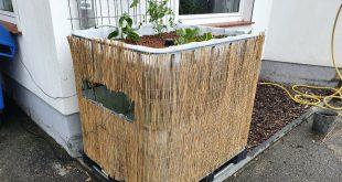 IBC Tank als Aquaponik - Cycle-Farming