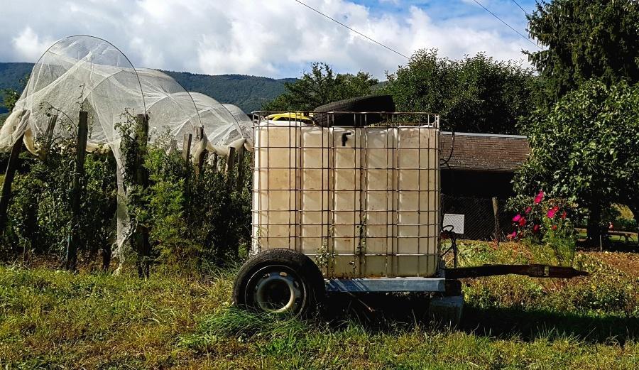 IBC Container steht als Wasservorrat im Garten - Abdeckplane ist sinnvoll