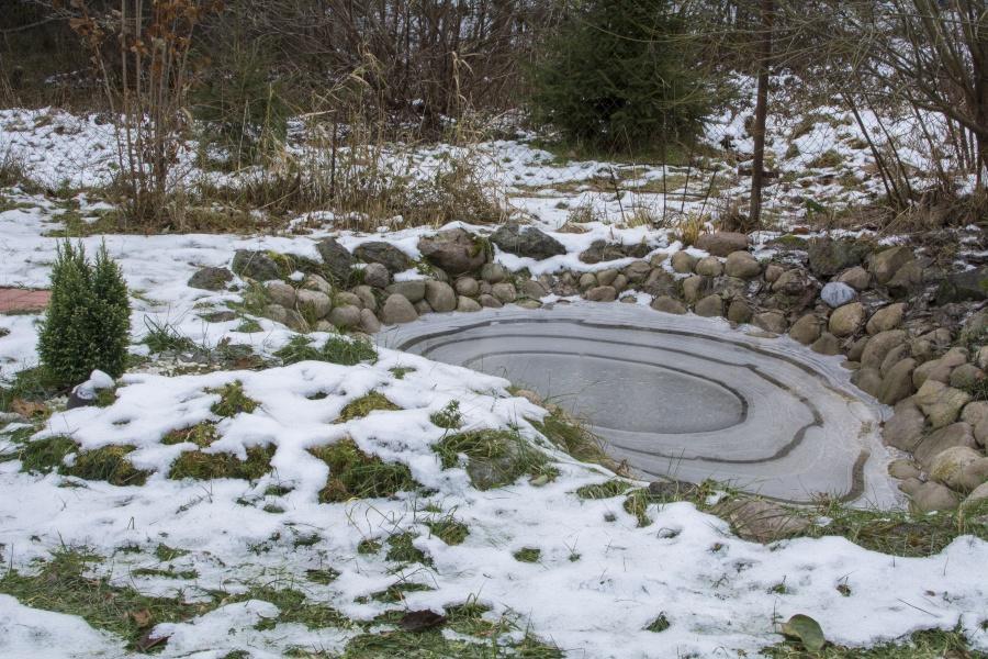Garten mit Teich im Winter